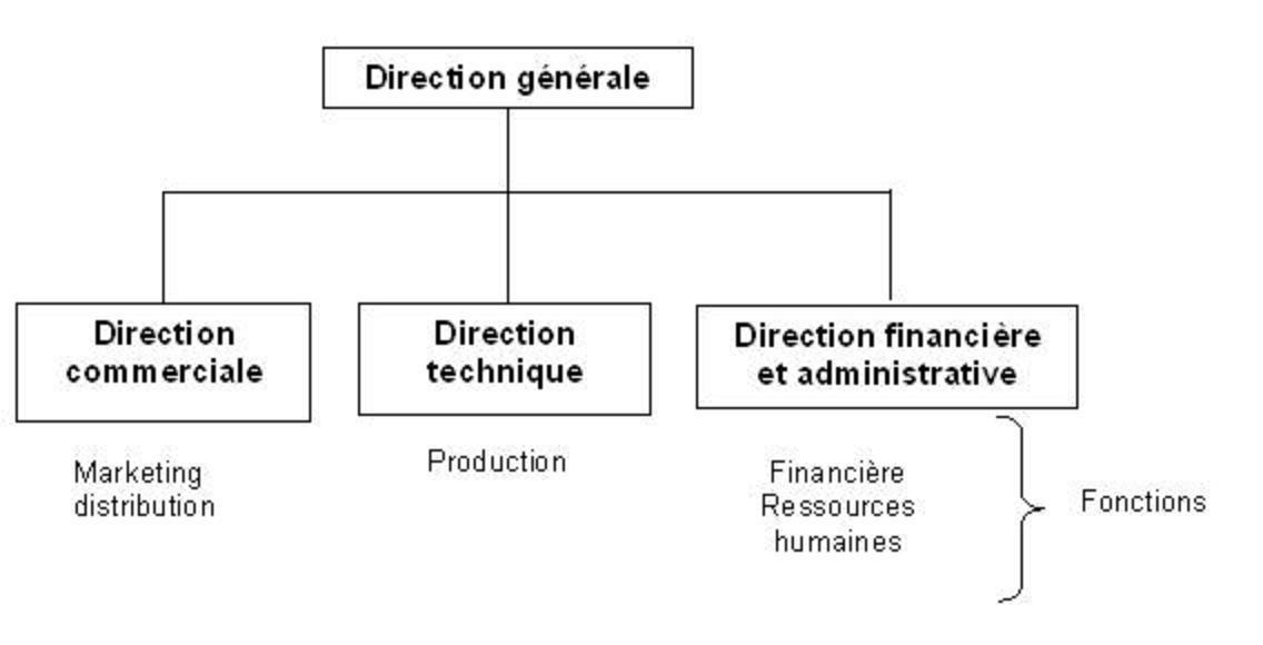 Exemple de l organigramme d une entreprise for Service aux entreprises exemple