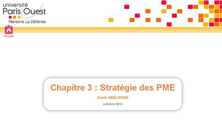 Accédez à la ressource pédagogique Introduction à la gestion des PME : Stratégie des PME